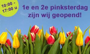 www.schattenvanutrecht.nl--open-pinksteren-expositie-oude-hortus-2015
