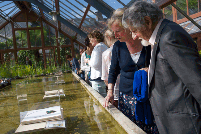 www.schattenvanutrecht.nl-opening-oude-hortus-2015-vijver-publiek