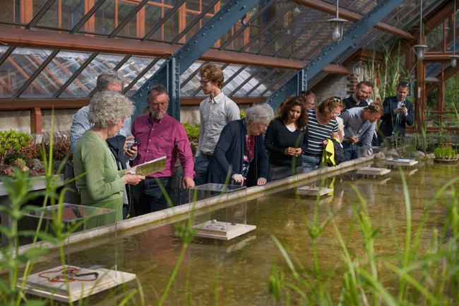 www.schattenvanutrecht.nl-opening-oude-hortus-2015-vijver